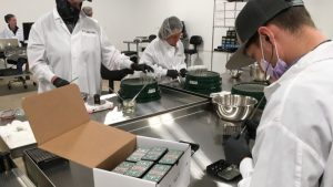 cannabis manufacturing facility security